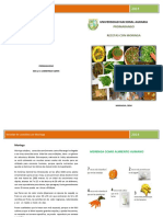 recetas_moringa.pdf