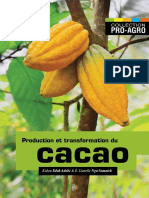 Production et transformation du Cacao