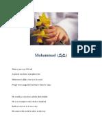 Muhammad (S.A.W)