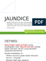 231760_JAUNDICE.pptx
