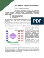 B2C_elektronikus_piacterek.pdf