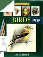 Birds_Drawing_in_Color.pdf