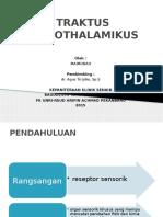 TRAKTUS SPINOTHALAMIKUS