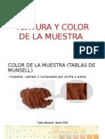Textura y Color de La Muestra