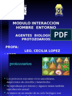 7. Protozoarios CLL