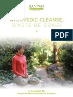 Banyan Botanicals Ayurvedic Cleanse - Scott Blossom & Robert Svoboda