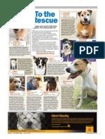 Perth Sunday Times - Week 11 - 27/6/2010