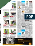Perth Sunday Times - Week 10 - 20/6/2010