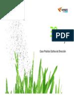 CASO_Estilos_de_direccion.pdf