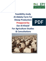 Feasibility sheep