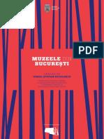 Analiza Muzee Virgil Nitulescu Web