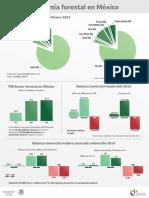 Economía Forestal México