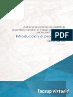 INTRODUCCIÓN AL PROCESO DE AUDITORIAS