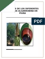 Analisis de Los Diferentes Tipos de Algarrobina en Piura