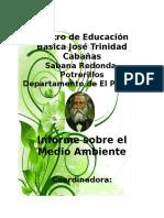 Informe Del Medio Ambiente - Mercedes