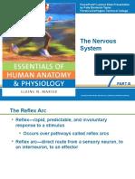 Nervous System 2