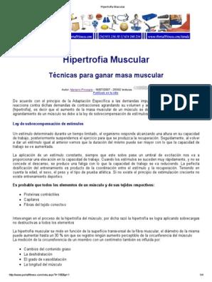 hipertrofia muscular dieta pdf