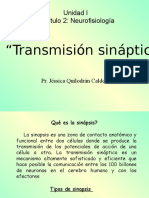 5-transmisionsinptica-090730143421-phpapp02.ppt