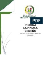 Proyecto Integrador Fin de Ciclo Pierina