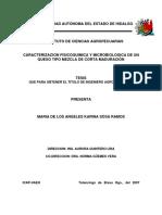 Tesis - Caracterizacion FQ y Microbiologica de Un Queso
