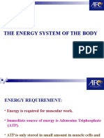 The Energy System of the Body 9