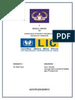 Project Report LIC