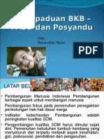 BKB-PAUD-Posyandu