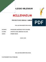 Colegio Milenium