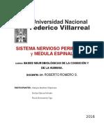 monografias (1)