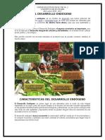 El Desarrollo Endógeno Imprimir Porfitas