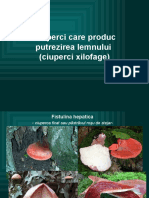 lpfitoexpl9