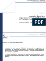 Aspectos da cultura organizacional no desenvolvimento tecnológico