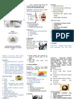 Leaflet Penyakit Pada Lansia