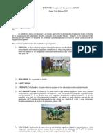 INFORME ADICHO + FOTOS.compressed.pdf