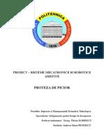 PROIESCT.docx