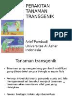 Perakitan Tanaman Transgenik