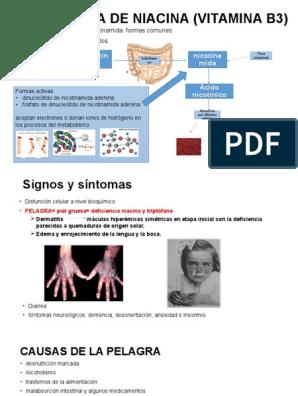 deficiencia de vitamina b3