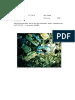 petrografi andsit.docx