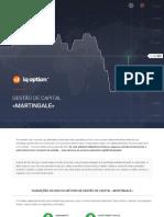 [PT] 06 = Metodo de gestao dos fundos - Martingale [2015.12.01]
