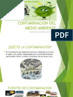 Contaminacion Del Medio Ambiente (1)