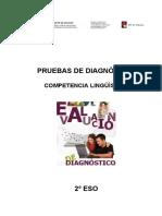 PRUEBAS DE DIAGNÓSTICO
