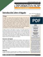 El hígado.pdf
