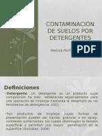 Contaminación de Suelos Por Detergentes