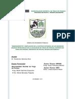 PIP TINGO DE PONAZA.pdf