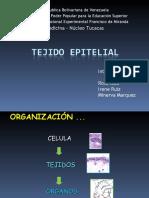 Tejido Epitelial..!!!