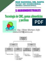 Presentacion3 Tecnologia de Cmcgomas y Pectinas