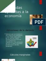 Derivada en La Economia