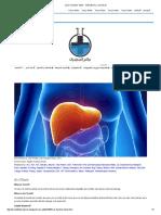 Liver Function Tests - عالم المختبرات و التحاليل الطبية