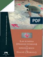 Icnitas de Dinosaurio en Teruel