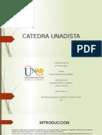 CATEDRA UNADISTA.pptx
